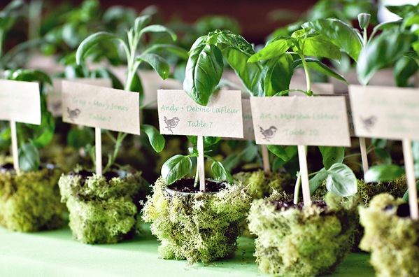 Eco wedding gifts for guests