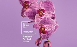 Pantone's Radiant Orchid color for 2014